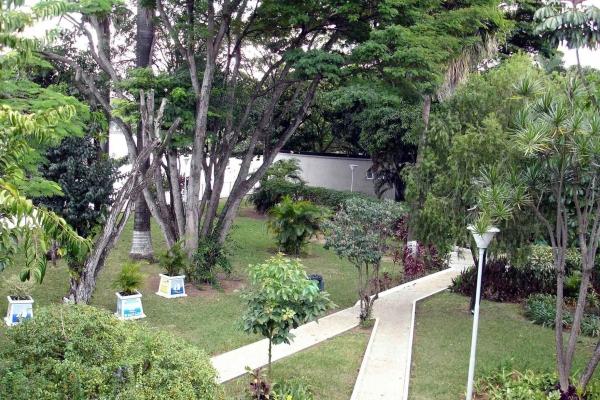 2-jardins-elaborados-pelo-paisagista-burle-marxE3FA9010-2B1A-2304-741A-7E89E52092F0.jpg